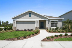 Photo of 12377 Blue Pacific Drive, RIVERVIEW, FL 33579 (MLS # W7828532)