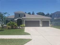 Photo of 6212 Horse Mill Place, PALMETTO, FL 34221 (MLS # A4438497)