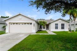 Photo of 4003 Kingsfield Drive, PARRISH, FL 34219 (MLS # O5793193)