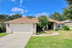 Photo of 9717 Crenshaw Circle, CLERMONT, FL 34711 (MLS # O5894832)