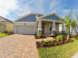 Photo of 14163 Gold Bridge Drive, ORLANDO, FL 32824 (MLS # S5003191)