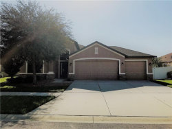 Photo of 7108 Spindle Tree Lane, RIVERVIEW, FL 33578 (MLS # T3131673)