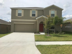 Photo of 209 English Channel Place, DOVER, FL 33527 (MLS # T3140062)