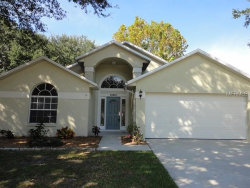 Photo of 10907 Brucehaven Drive, RIVERVIEW, FL 33578 (MLS # T3141760)