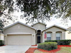Photo of 1119 Fennel Green Drive, SEFFNER, FL 33584 (MLS # T3149579)