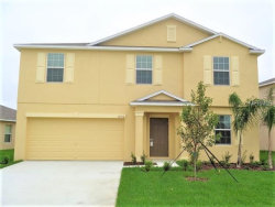 Photo of 10516 Fuzzy Cattail Street, RIVERVIEW, FL 33578 (MLS # T3163588)