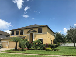 Photo of 14804 Princewood Lane, LAND O LAKES, FL 34638 (MLS # T3163847)