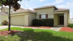 Photo of 13511 Blue Sunfish Court, RIVERVIEW, FL 33569 (MLS # T3175583)