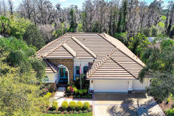 Photo of 1426 Flores Court, TRINITY, FL 34655 (MLS # T3187021)