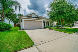 Photo of 5803 Tulip Flower Drive, RIVERVIEW, FL 33578 (MLS # T3187988)