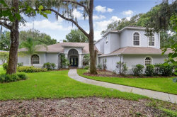 Photo of 6231 Wild Orchid Drive, LITHIA, FL 33547 (MLS # T3198614)