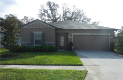 Photo of 12358 Chaya Court, SPRING HILL, FL 34610 (MLS # T3199204)