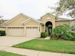 Photo of 8335 Old Town Drive, TAMPA, FL 33647 (MLS # T3205831)