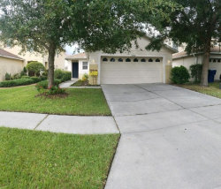 Photo of 17541 Queensland Street, LAND O LAKES, FL 34638 (MLS # T3208403)