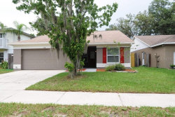 Photo of 2518 Wrencrest Circle, VALRICO, FL 33596 (MLS # T3209842)