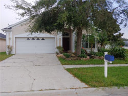 Photo of 17353 Lawn Orchid Loop, LAND O LAKES, FL 34638 (MLS # T3211254)