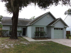 Photo of 4621 Cabbage Palm Drive, VALRICO, FL 33596 (MLS # T3211573)