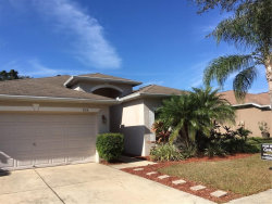 Photo of 804 Coade Stone Drive, SEFFNER, FL 33584 (MLS # T3220027)