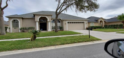 Photo of 10034 Cypress Shadow Avenue, TAMPA, FL 33647 (MLS # T3221738)