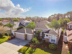 Photo of 12908 Castlemaine Drive, TAMPA, FL 33626 (MLS # T3221828)