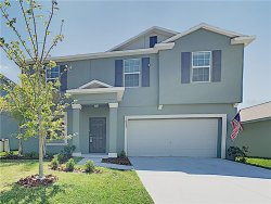 Photo of 10233 Strawberry Tetra Drive, RIVERVIEW, FL 33578 (MLS # T3234798)