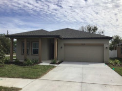 Photo of 11619 Pace Bend Court, GIBSONTON, FL 33534 (MLS # T3237708)