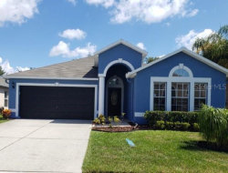 Photo of 17010 Torvest Court, LAND O LAKES, FL 34638 (MLS # T3245994)