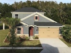 Photo of 16351 Hyde Manor Drive, TAMPA, FL 33647 (MLS # T3258031)