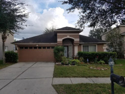 Photo of 18207 Sandy Pointe Drive, TAMPA, FL 33647 (MLS # T3258367)