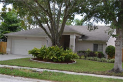 Photo of 4499 Anglers Crossing, PALM HARBOR, FL 34685 (MLS # U8011519)