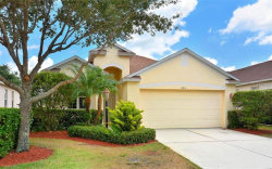 Photo of 15319 Searobbin Drive, LAKEWOOD RANCH, FL 34202 (MLS # U8040739)