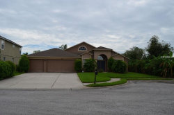 Photo of 1730 Lady Palm Court, TRINITY, FL 34655 (MLS # W7802929)