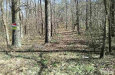 Photo of 2576 Conyers Road, Franklinton, NC 27525 (MLS # 2291439)