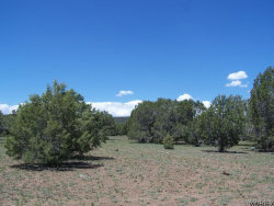 Tiny photo for 4 Lots High Mountain Road, Seligman, AZ 86337 (MLS # 926748)
