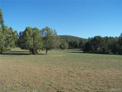 Tiny photo for Lot 005 Meadowview, Seligman, AZ 86337 (MLS # 926751)