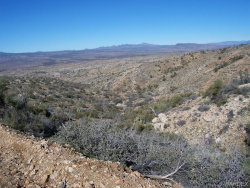 Tiny photo for Lot 96 New Water Well, Kingman, AZ 86401 (MLS # 928544)