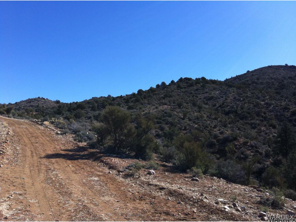 Photo for Lot O New Water Well Road, Kingman, AZ 86401 (MLS # 938435)