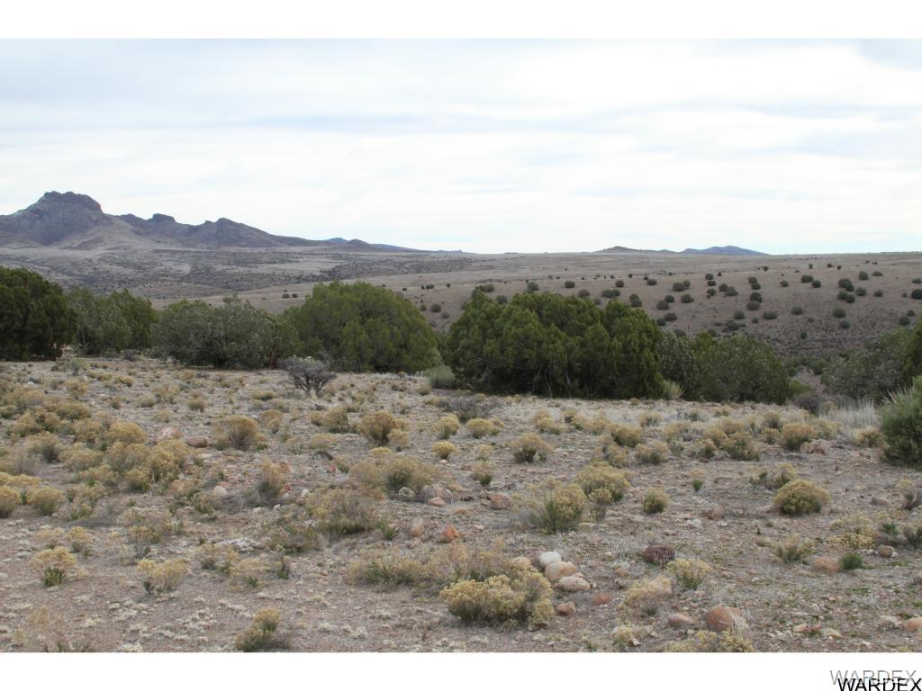 Photo for Lot 237 Prairie Schooner, Wikieup, AZ 85360 (MLS # 939287)