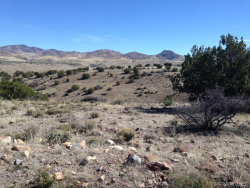 Tiny photo for Lot 237 Prairie Schooner, Wikieup, AZ 85360 (MLS # 939287)