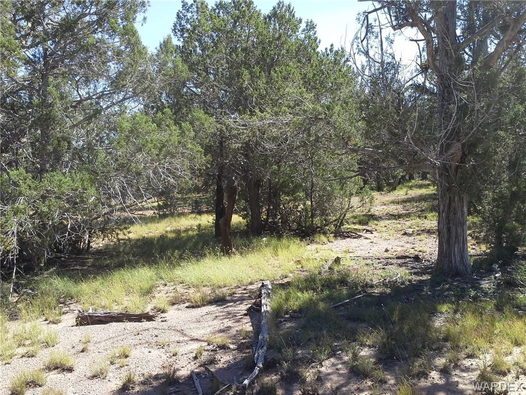 Photo for Lot 627 Ancient Way, Seligman, AZ 86337 (MLS # 939874)