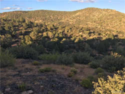 Tiny photo for Lot 135 Velvet Antler, Kingman, AZ 86401 (MLS # 941394)
