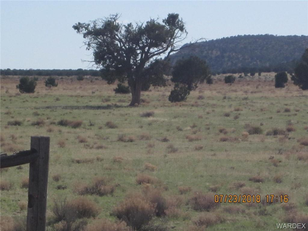 Photo for Parcel 664, Peach Springs, AZ 86434 (MLS # 950473)