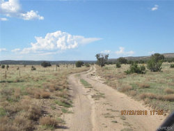 Tiny photo for Parcel 664, Peach Springs, AZ 86434 (MLS # 950473)