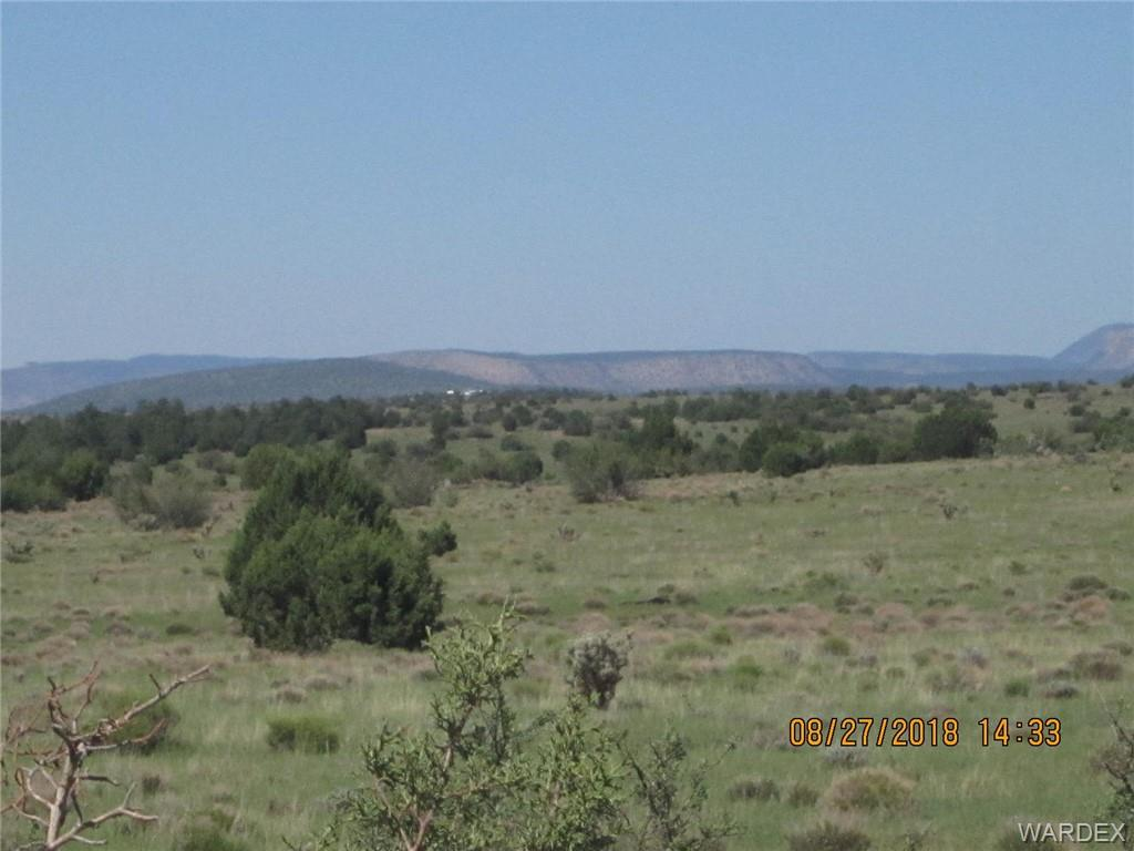 Photo for Lot 311 Hyde Park Road, Seligman, AZ 86337 (MLS # 950484)