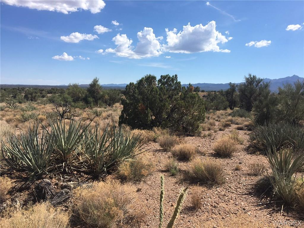 Photo for Stephan Rd Lot 62 Cedar Hills Ranches Road, Kingman, AZ 86401 (MLS # 950947)