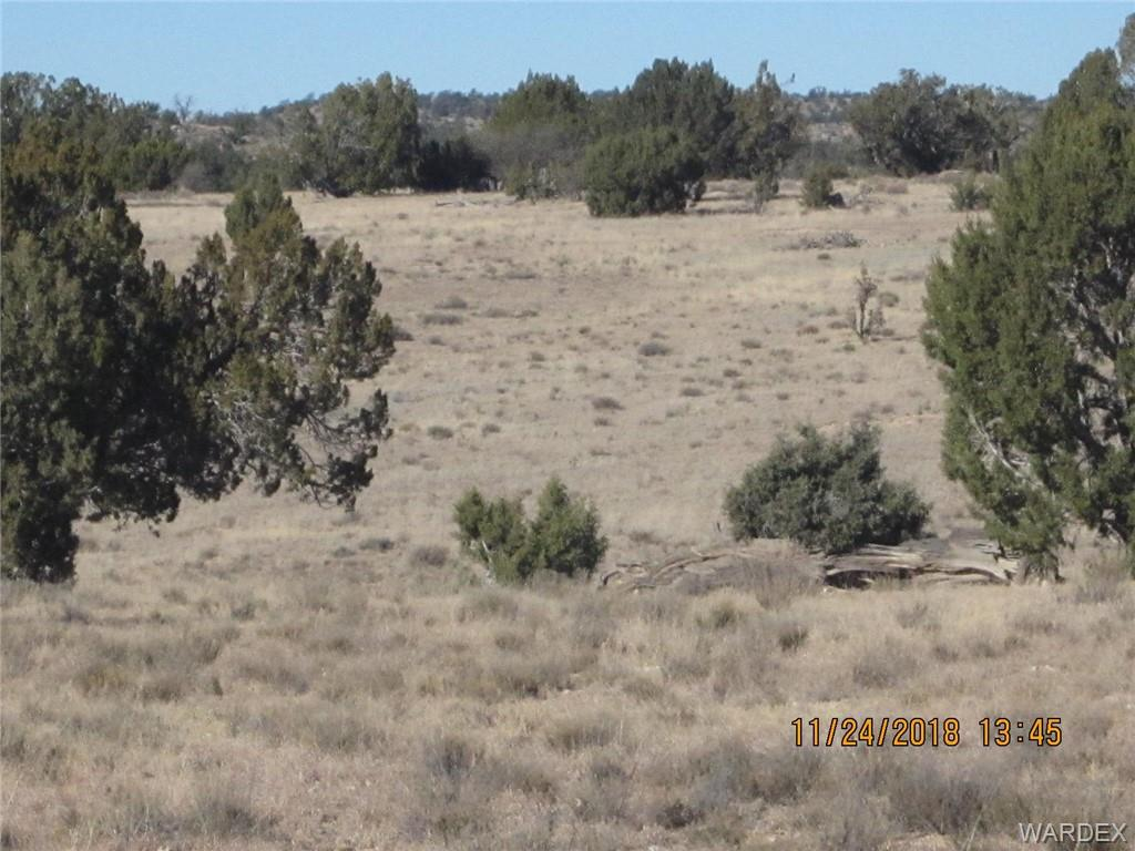 Photo for Parcel 689, Peach Springs, AZ 86434 (MLS # 951535)
