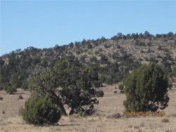 Tiny photo for Parcel 689, Peach Springs, AZ 86434 (MLS # 951535)