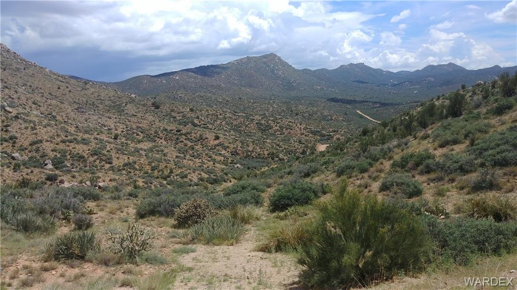 Photo for Lot 29 Pack Mule Road, Wikieup, AZ 85360 (MLS # 952901)