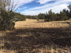 Tiny photo for 42883 N Walk About Trail, Seligman, AZ 86337 (MLS # 953201)