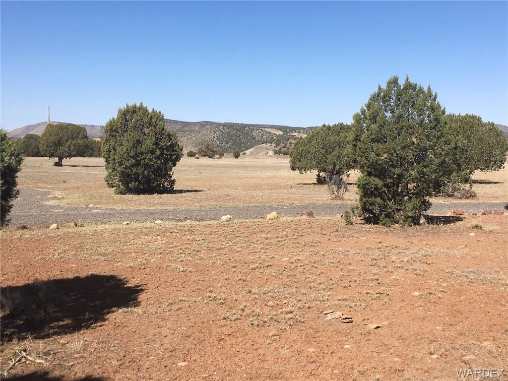 Photo for 18750 E Bobcat Trail, Kingman, AZ 86401 (MLS # 955979)